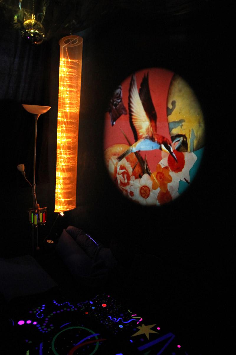 Obrázkový kotúč v multisenzorickej miestnosti s obrazom vtáka